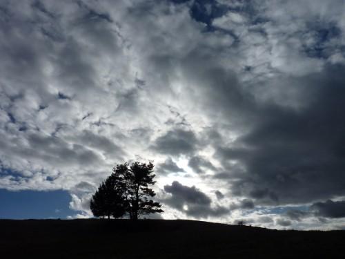 carnet,campagne,nuage,heures lentes,lenteur,contemplation,mélancolie,journal,note,prairie journal,merle,pie,crêt,herbe,fleurs sauvages,nuage,brouillard,flambée, cheminée,sandwiche,feu,blog littéraire de christian cottet-emard