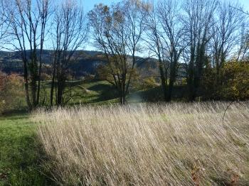 ciel,campagne,chez moi,jura,photo,blog littéraire de christian cottet-emard,humeur,interlude photo,christian cottet-emard,lune,herbes,arbres,nuages