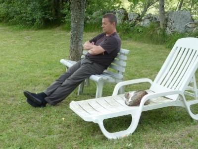 chat,sir alfred,christian cottet-emard,été,soleil,bain de soleil,sieste