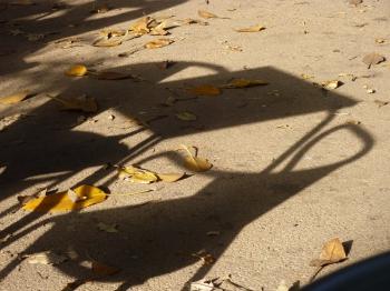 estime-toi heureux©,orage-lagune-express,poésie,carnet poétique,instant,instantané,croquis,christian cottet-emard,moment présent,littérature,contemplation,rêverie,vacances,congés,square,jardin public,été,bonheur,fin d'été,blog littéraire de christian cottet-emard,photo,carnet photo,lisbonne,portugal,principe real