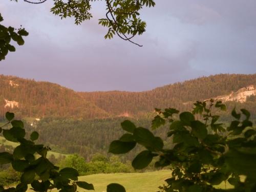 été,saison,carnet photo,images,blog littéraire de christian cottet-emard,contemplation,rêverie,campagne