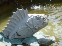 poisson,fontaine,parc rené nicod,oyonnax,ain,rhône-alpes,autobiographie,adolescence,variations symphoniques,christian cottet-emard,blog littéraire,souvenir