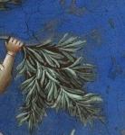 rameaux, fête des rameaux, dimanche des rameaux, occident, fête chrétienne, blog littéraire de christian cottet-emard